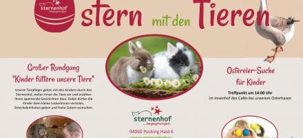 Ostern mit den Tieren des Sternenhofs Pocking